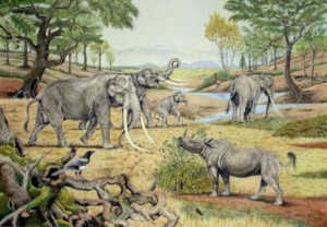 This is a reconstruction of a Last Interglacial temperate landscape (Germany) with typical Late Pleistocene European large herbivores such as the now extinct straight-tusked elephant (Elephas antiquus), an extinct rhinoceros (Stephanorhinus kirchbergensis), as well as the still common roe deer (Capreolus capreolus). Credit: Illustrator, Elke Gröning