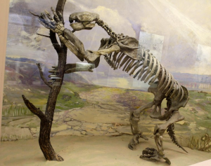 The giant sloth succumbed to the advance of humans.(Wikimedia Commons)