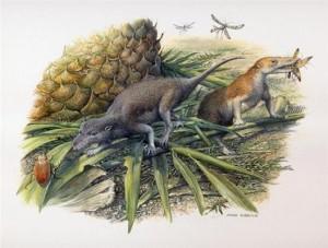 Morganucodon and Kuehneotherium. Credit: Pamela Gill